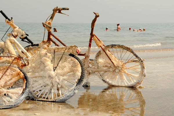 Bic-dead-sea